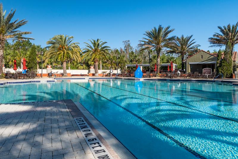 Palms Pool.jpg