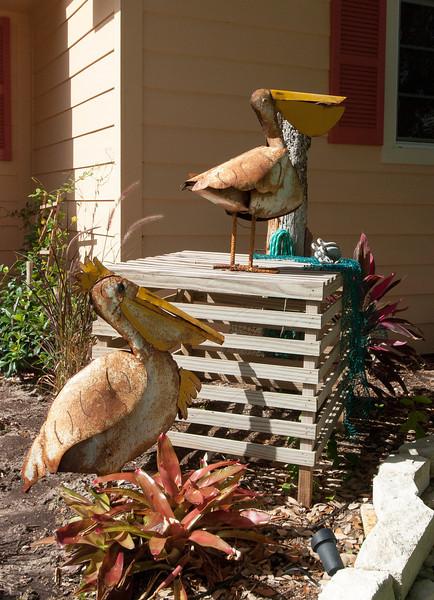 4 Pelican