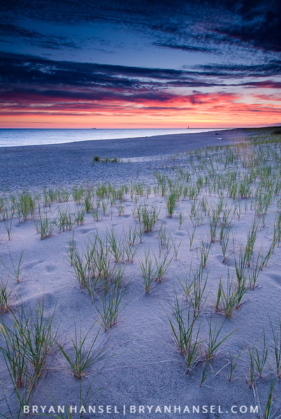 Beach Grass and Sunrise