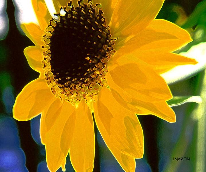 crown for the sun god 7-22-2008.jpg
