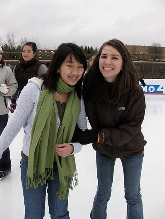 Ice-Skating Party