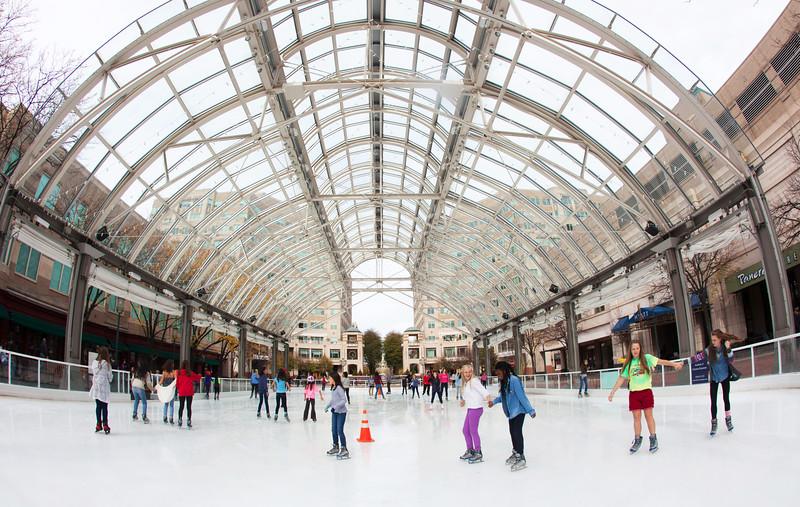 CG044 ice rink.JPG