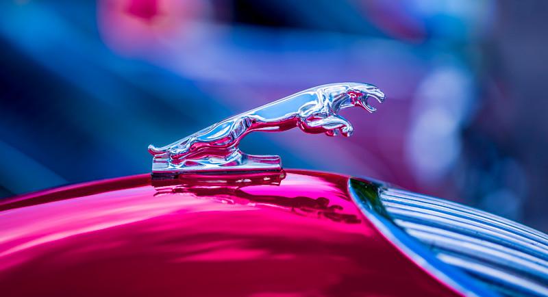 CAR SHOW_-83.jpg
