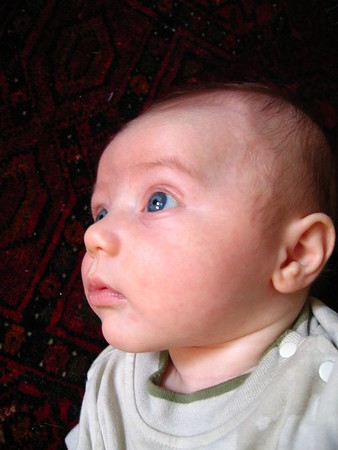 2005 07 Roman