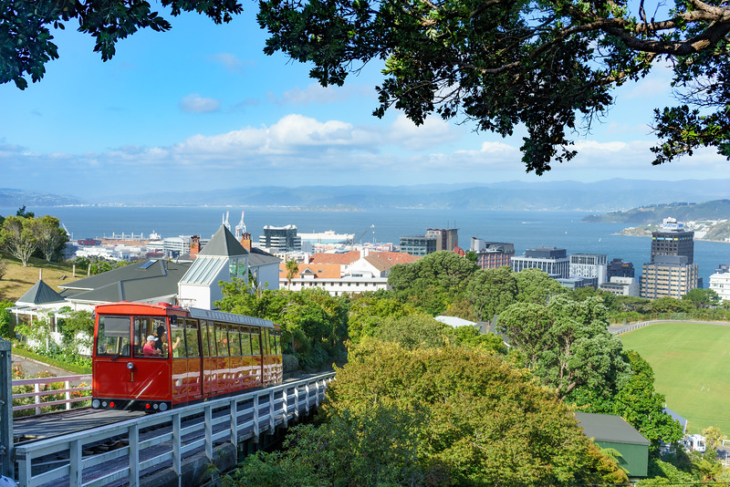 Wellington -200216-024.jpg