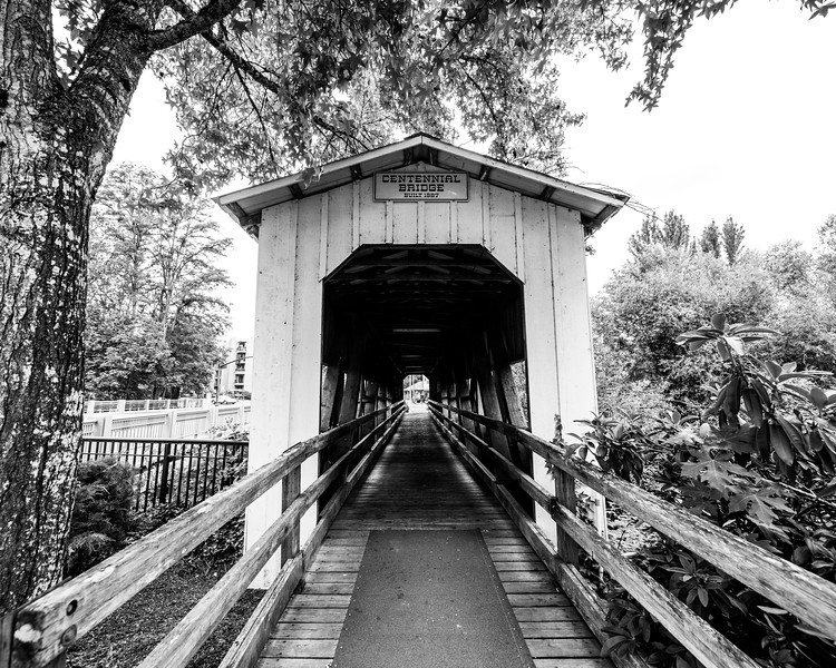 Cottage Grove Covered Bridges Full Size-8.jpg