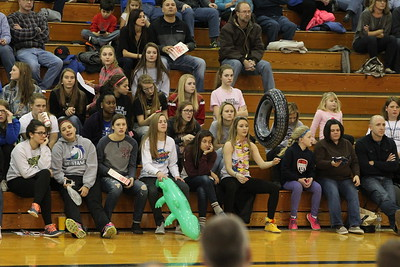FANS IN THE STANDS MN vs BENSON