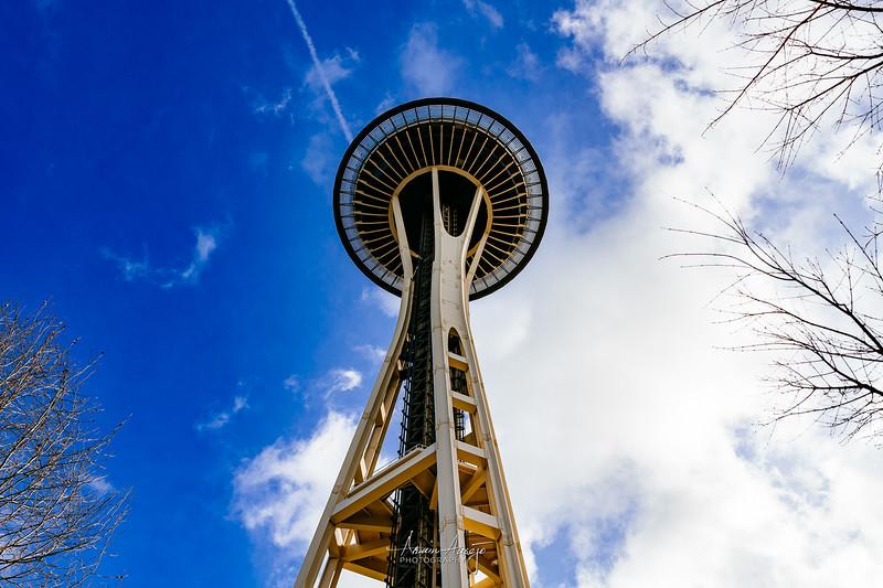 SeattleFPITeamFeb2020-20.jpg