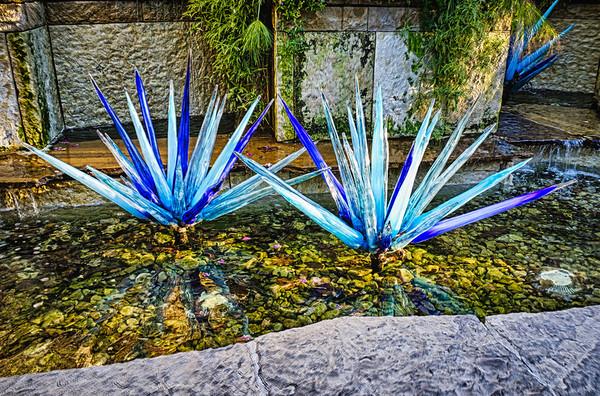 Dallas - Arboretum - Chihuly Nights
