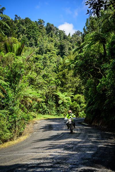 2018 KTM New Zealand Adventure Rallye - Northland (753).jpg