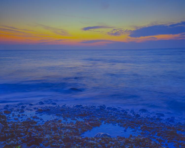 SC 4918 Blue Ocean Needs spotting bacly-43.jpg