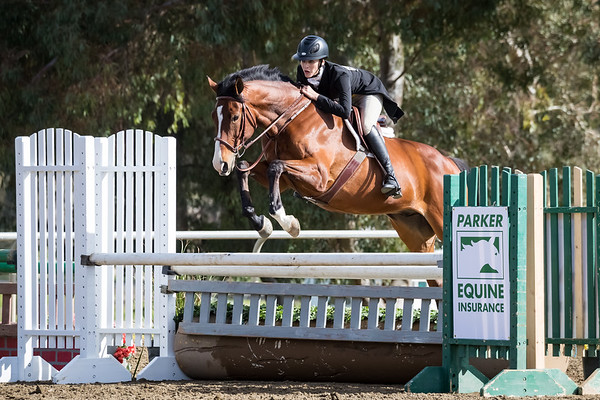 Thoroughbred Classic Horse Show 2018 - Sunday