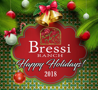 20181208 Bressi Holiday 2018