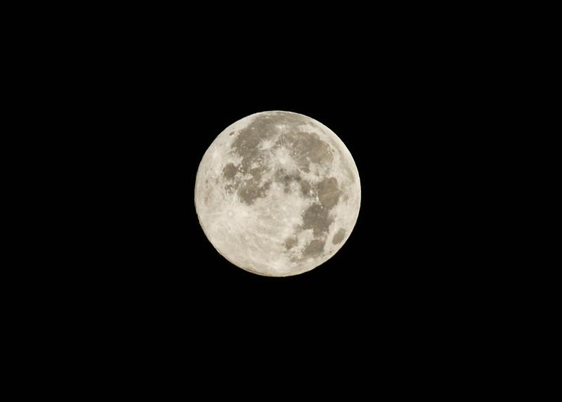 NEA_0255-7x5-Super Moon.jpg