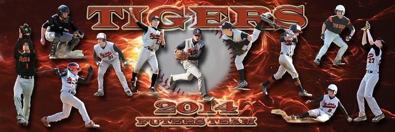 BGHS Tigers Baseball Futures