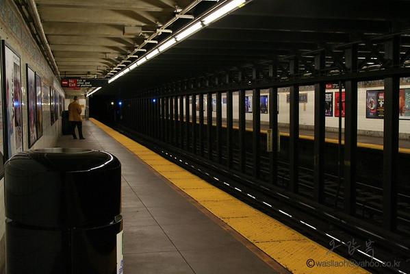 New York Trains