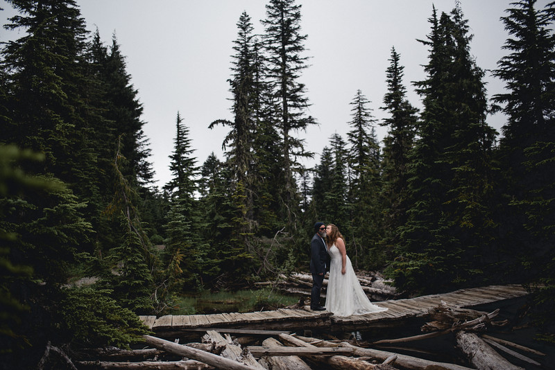 Travel Adventure Wedding Photographer - Mt Rainier - Rose-14.jpg