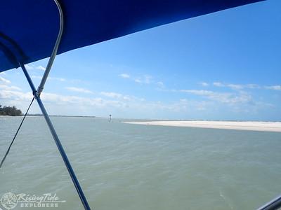 9AM Essence of the Estuary Eco Cruise - Molitor & Malecek