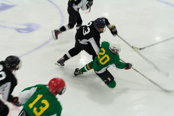 Wolves at Golden Seals 5-18-2014