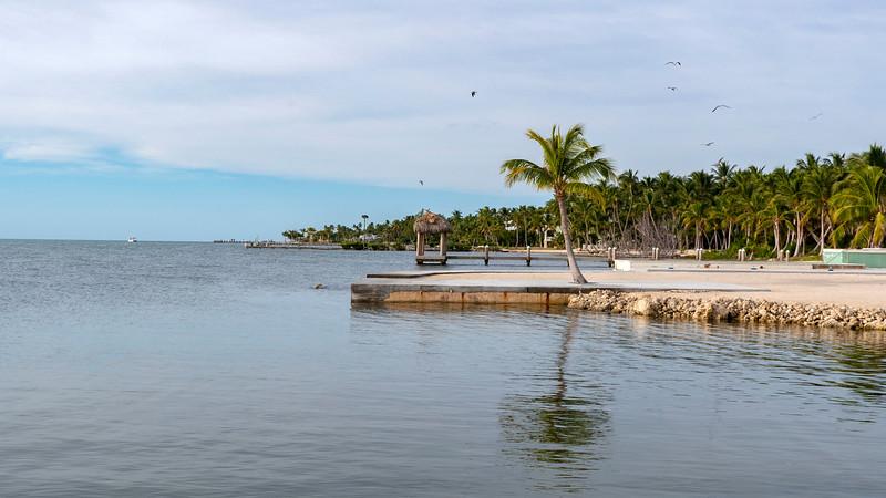 Florida-Keys-Islamorada-Hotel-Hadley-House-Resort-05.jpg