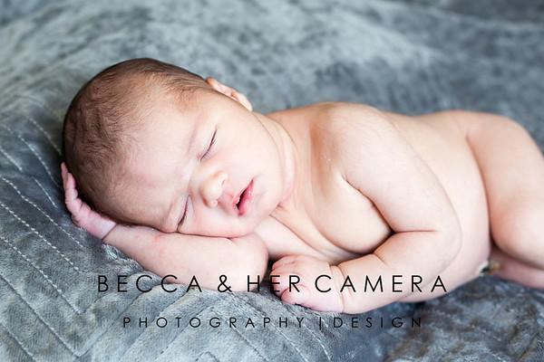 Cruz Holguin   Newborn