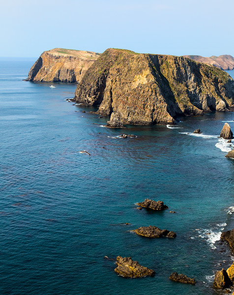 Channel Islands_03_Channel Islands__MG_1744.jpg