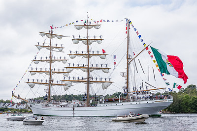 The Tall Ships Race Fredrikstad