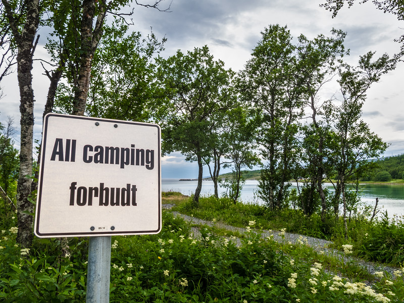 All camping forbudt