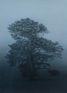2015 New Works : Olsen Irwin Works On Paper, Sydney