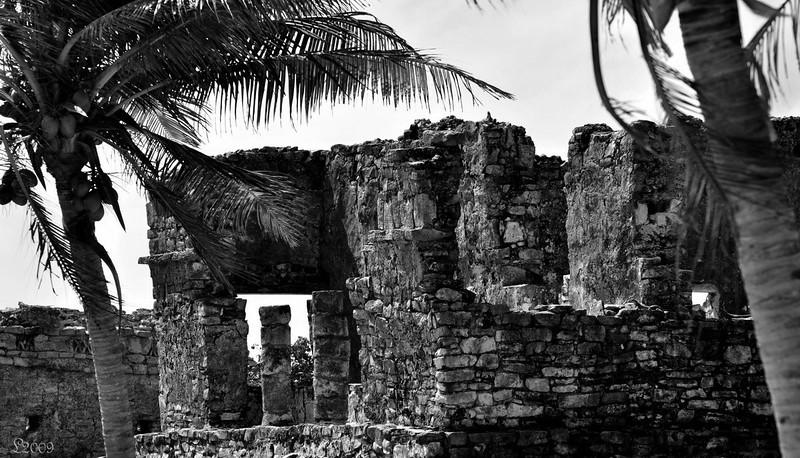 Day5 Cozumel Tulum 02-11-2009 225a.jpg