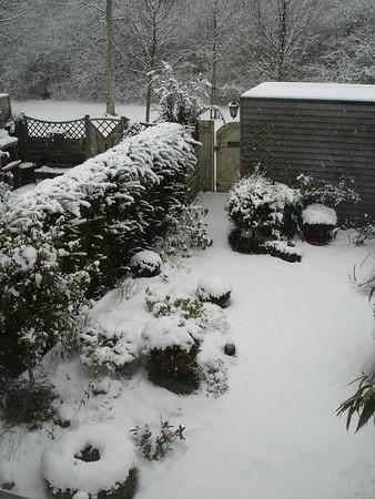 Winter 2004/2005