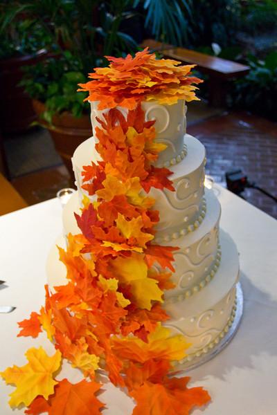 Emmalynne_Kaushik_Wedding-841.jpg