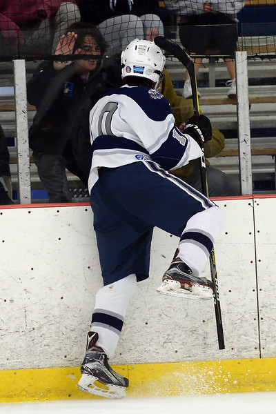 #10, Sean Rogers celebrates a goal scored with Manasquan fans in the game played against Freehold at the Jersey Shore Arena on 01/16/2019.(STEVE WEXLER/THE COAST STAR(.