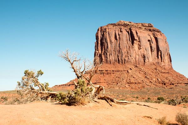Monument Valley / Navajo National Monument / Arizona