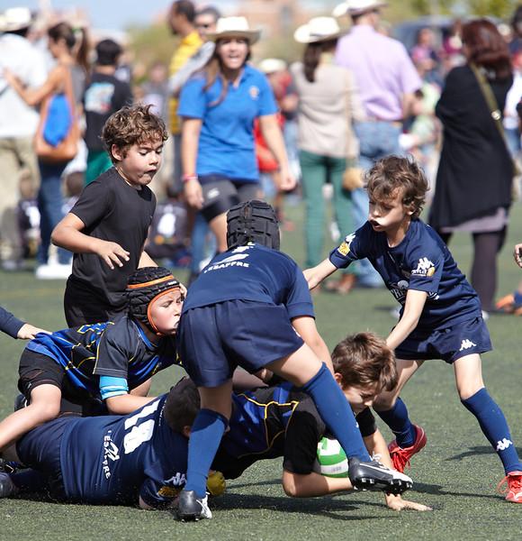 0199_12-Oct-13_TorneoPozuelo.jpg
