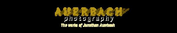 AuerbachPhotoLogoShadows.png