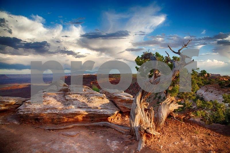 Canyonlands, Buck Canyon  6257_HDR.jpg