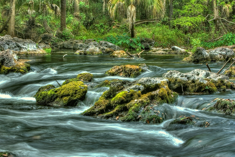 Hillsborough River Rapids