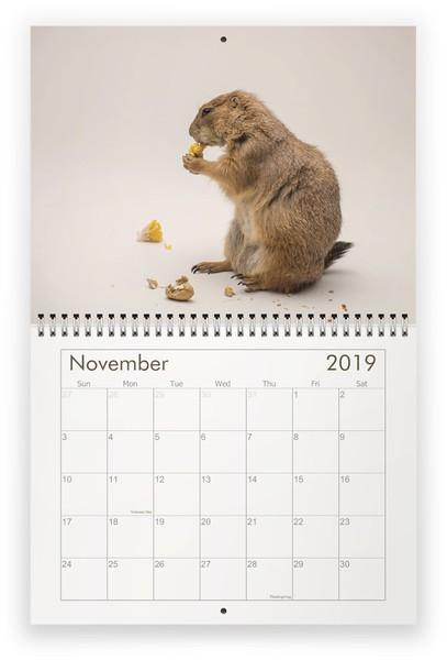 11_November 2019.jpg