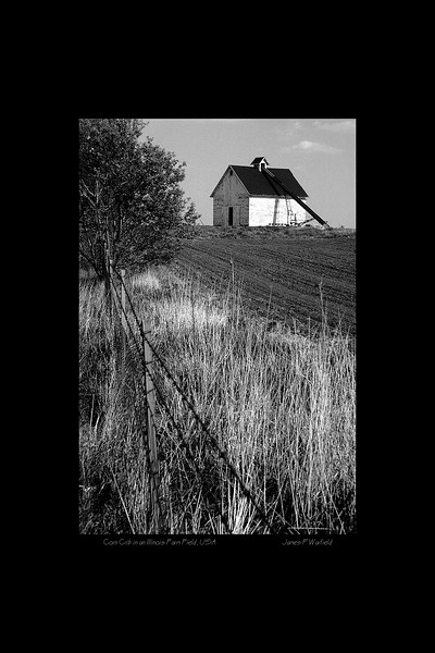 068_Corn Crib in an Illinois Farm Field, USA copy.jpg