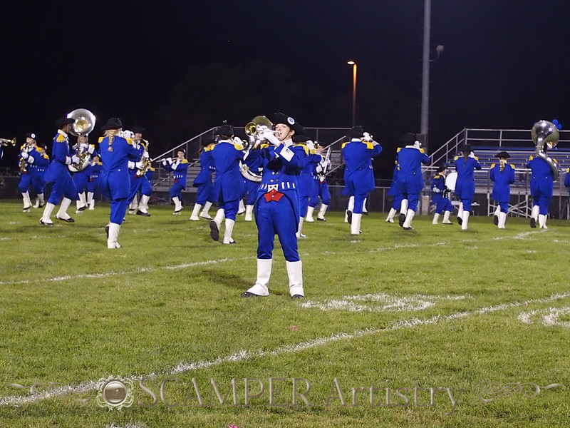 Showcase of Bands 2015