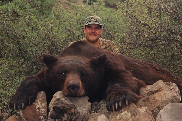 1996 Arizona Black Bear (Aug)