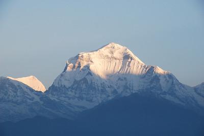 Day 5 - Poonhill, Ghorapani to Shikha