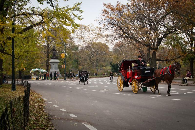 NYC 201211 Central Park (6).jpg