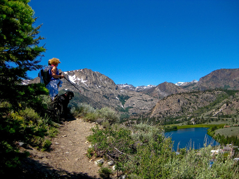 On the Yost Creek - Fern Creek trail, above June Lake Loop, Carson Peak and Gull lake in the image. See map Yellow line