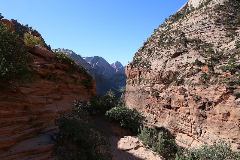 Chain trail 6.jpg