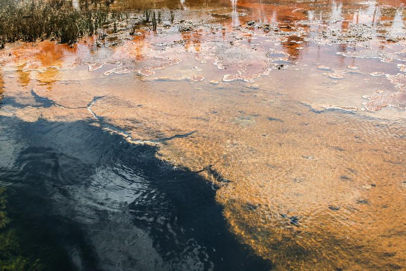 Yellowstone-8615.jpg