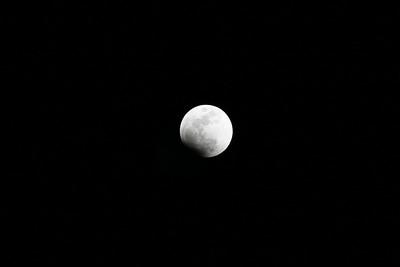 Lunar Eclipse 2.20.2008