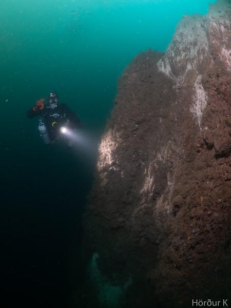 Swimming around the pinnacle