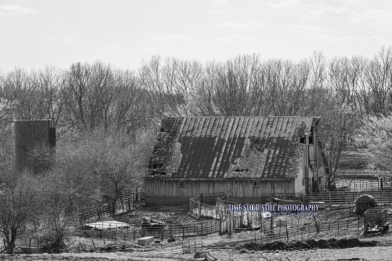 KC Landscape-61.jpg